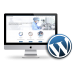 Paket Website Wordpress